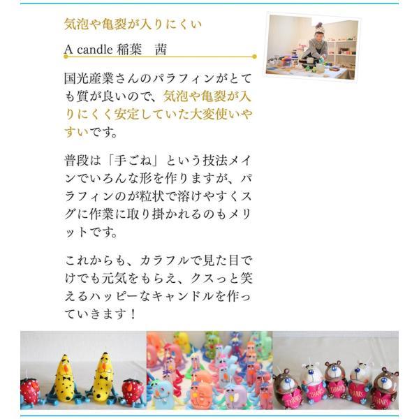 パラフィンワックス キャンドル 135 600g 人気No1 シェアNo1 candle21 07