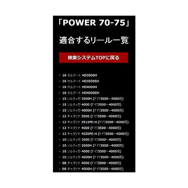 LIVRE(リブレ) POWER70-75 13ステラSW4000~6000左右共通ガンメタ/チタン. 7652