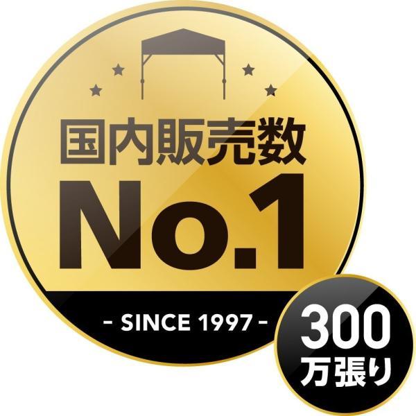 カンタンタープ300専用天幕ベンチレーション・ブルー フレーム別売 KTRF300-VLB 3m caply 06