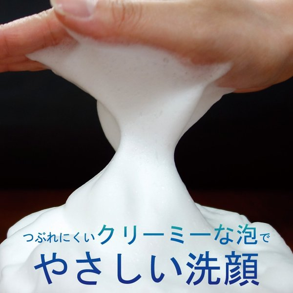 薬用クレンジングフォーム ロジエ|capreve-online|04