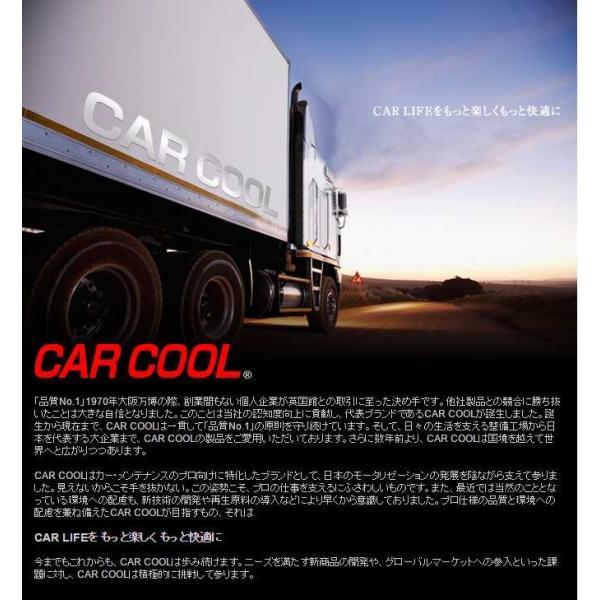 ルームクリーンアップ2  カーエアコンの消臭 除菌剤|carpart83|02
