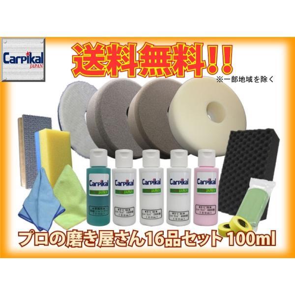 業務用 カーピカルプロの磨き屋さん W・ギアアクション用Sバフ16品セット