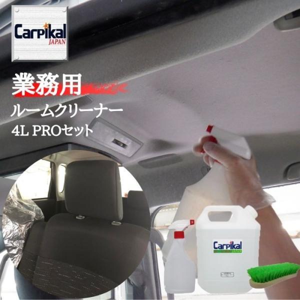 車内天井汚れ 【ルームクリーナー4L PROセット】 清掃 シート汚れ マット汚れ シミ落とし 車内クリーニング