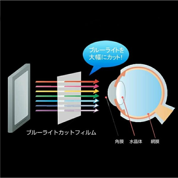 Boox Note Plus 用専用 ブルーライトカット 反射防止 液晶保護フィルム 指紋防止 気泡レス加工 液晶フィルム casemania55 05