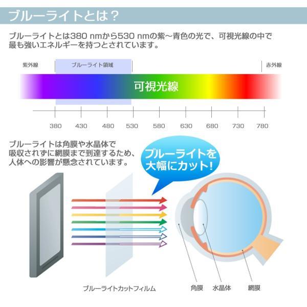 東芝 REGZA 19A1[19インチ]ブルーライトカット 反射防止 液晶保護フィルム