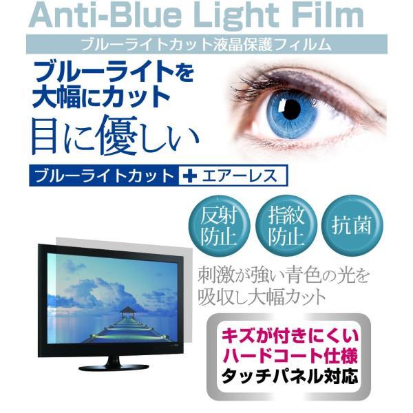 イーバランスROOMMATE EB-RM19DTV[18.5インチ]ブルーライトカット 反射防止 液晶保護フィルム