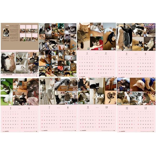 【ネコポス便可能】2018年 Cattery BRANCHE チャリティー壁掛けカレンダー /猫/ネコ/ねこ/子猫/乳飲み猫/|cattery-branche