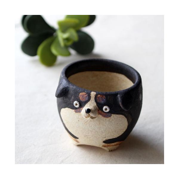 植木鉢 バーニーズマウンテンドック 小 陶器 犬 多肉植物 利十郎窯 信楽焼|cayest