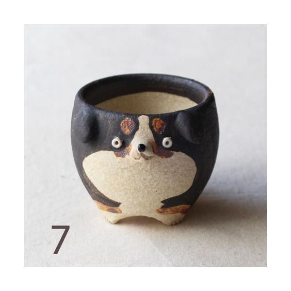 植木鉢 バーニーズマウンテンドック 小 陶器 犬 多肉植物 利十郎窯 信楽焼|cayest|11