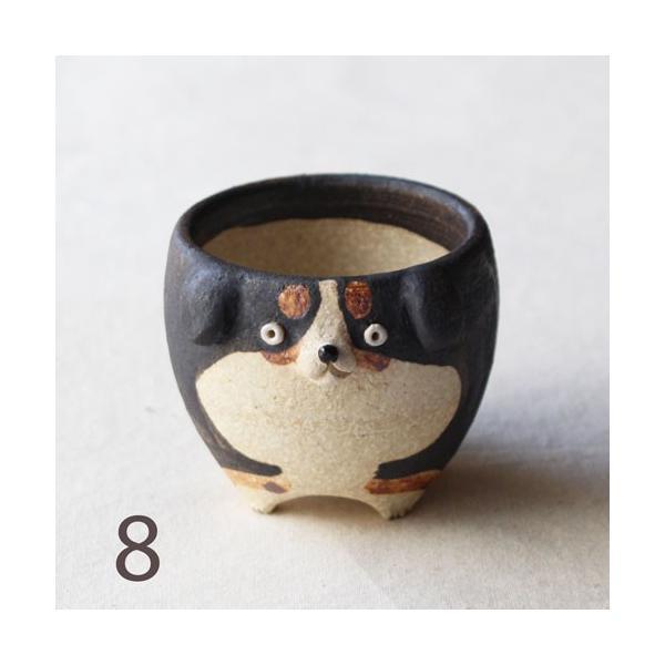 植木鉢 バーニーズマウンテンドック 小 陶器 犬 多肉植物 利十郎窯 信楽焼|cayest|12