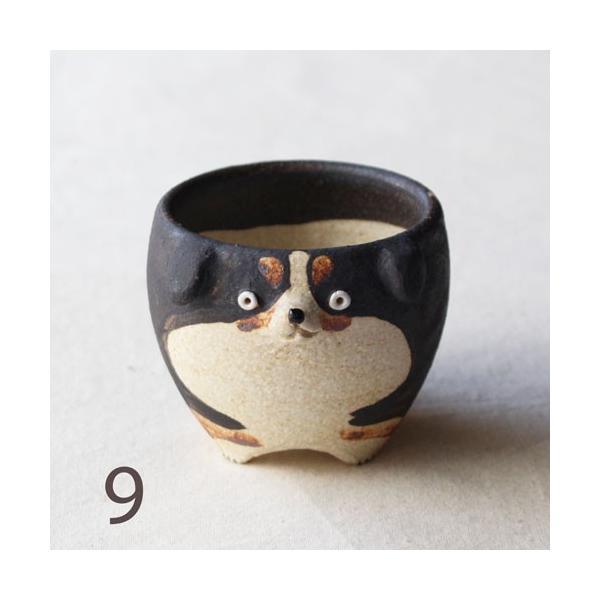 植木鉢 バーニーズマウンテンドック 小 陶器 犬 多肉植物 利十郎窯 信楽焼|cayest|13