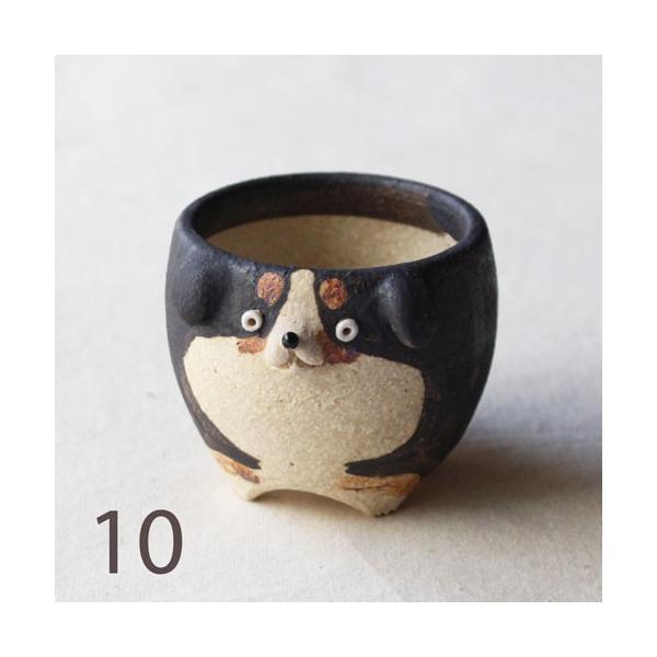 植木鉢 バーニーズマウンテンドック 小 陶器 犬 多肉植物 利十郎窯 信楽焼|cayest|14
