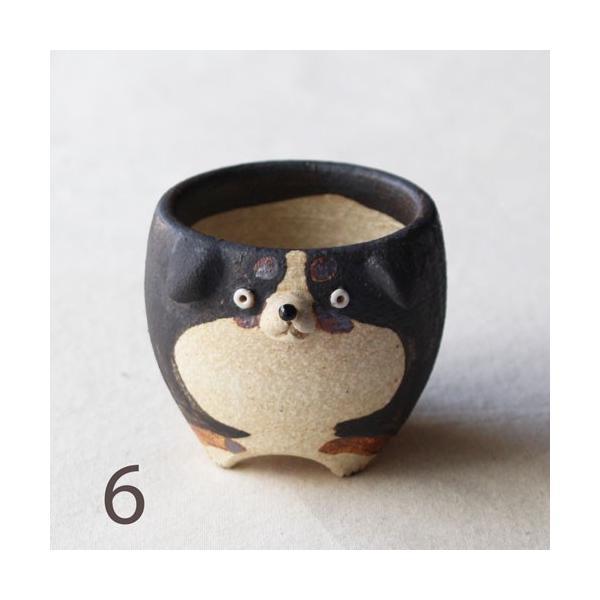 植木鉢 バーニーズマウンテンドック 小 陶器 犬 多肉植物 利十郎窯 信楽焼|cayest|10
