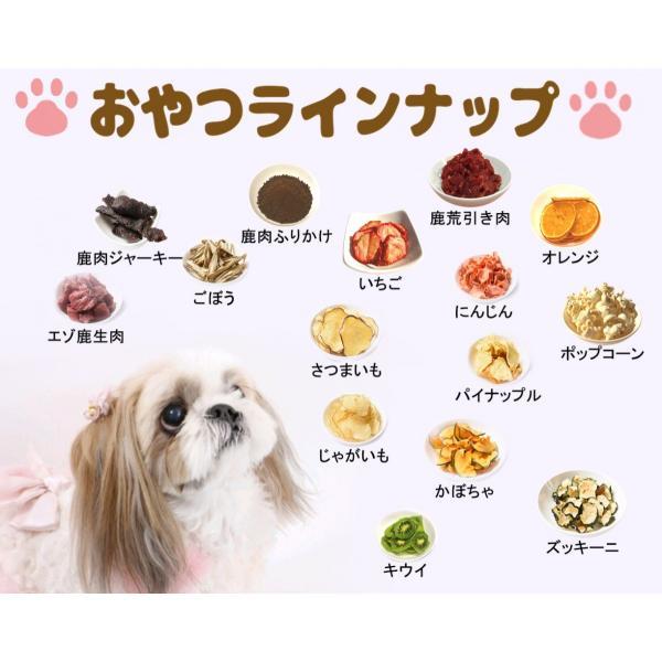 鹿肉【生肉】【犬のおやつ 無添加】【犬のおやつ 鹿肉】【犬のおやつ アレルギー】完全無添加  北海道産 エゾ鹿  アレルギーのあるわんちゃんに 1kg|cbdog|07