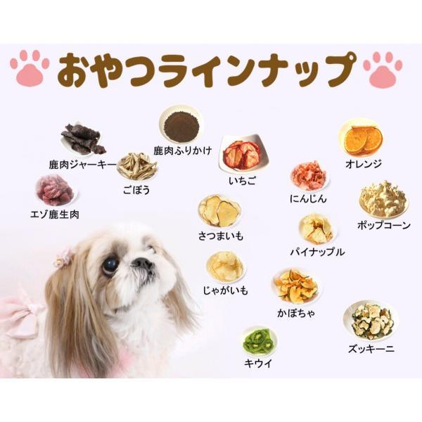 鹿肉【ジャーキー】【犬のおやつ 無添加】【犬のおやつ 鹿肉】【犬のおやつ アレルギー】完全無添加 北海道産 エゾ鹿  アレルギーのあるわんちゃんに 40g|cbdog|05