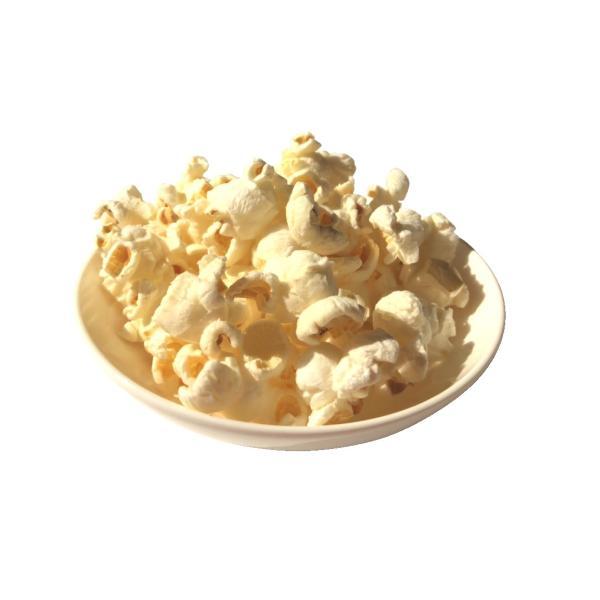 完全無添加 ポップコーン 犬 おやつ 野菜  ノンフライ・ノンオイル ノンシュガー  アレルギーのあるわんちゃんに 8g 2袋セット cbdog 04