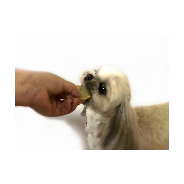 じゃがいもチップス【犬のおやつ 無添加】【犬のおやつ 野菜】 完全無添加 北海道産 ノンフライ・ノンオイル ノンシュガー アレルギーのあるわんちゃんに 20g|cbdog|03
