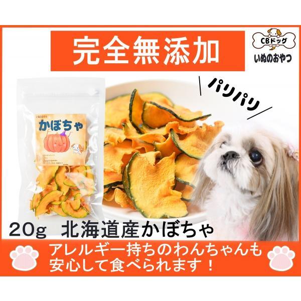 かぼちゃチップス【犬のおやつ 無添加】【犬のおやつ 野菜】完全無添加 北海道産 ノンフライ・ノンオイル ノンシュガー アレルギーのあるわんちゃんに 20g cbdog