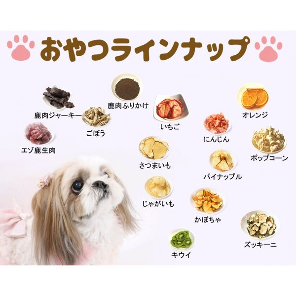 かぼちゃチップス【犬のおやつ 無添加】【犬のおやつ 野菜】完全無添加 北海道産 ノンフライ・ノンオイル ノンシュガー アレルギーのあるわんちゃんに 20g cbdog 05
