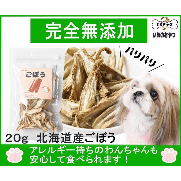 ごぼうチップス【犬のおやつ 無添加】【犬のおやつ 野菜】 完全無添加  ノンフライ・ノンオイル ノンシュガー  アレルギーのあるわんちゃんに 20g|cbdog