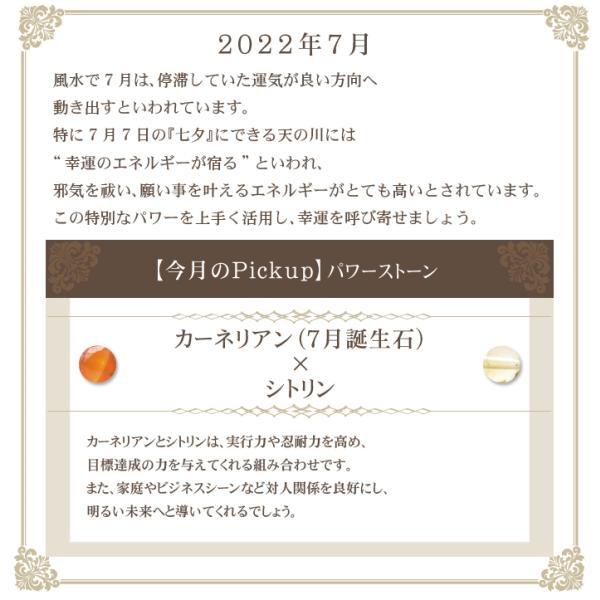 パワーストーン ブレスレット ブレス メンズ レディース 天然石 月替り 4月限定 プレゼント 送料無料|ccr|04