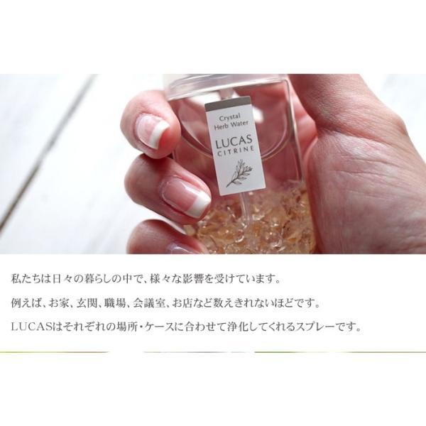 パワーストーン ホワイトセージ 浄化スプレー LUCAS ルカス 天然石 ゆうパケット送料無料|ccr|14