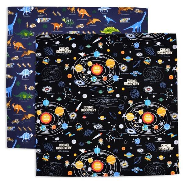 ランチクロス・給食ナフキン(45cm×45cm)柄違い2枚セット太陽系惑星と恐竜大陸セット(ランチクロス小学校正方形ナフキン幼稚