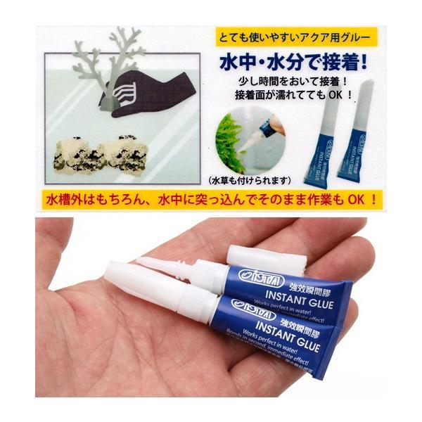 アズー インスタントグルー 4g×2本入 淡水・海水両用 関東当日便|chanet|02
