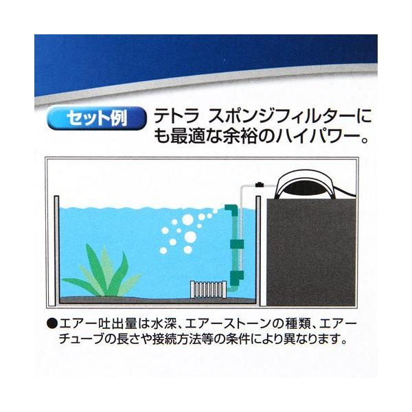 テトラ ウィスパーエアー 60 観賞魚用エアーポンプ 関東当日便|chanet|04