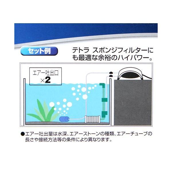 テトラ ウィスパーエアー 120 観賞魚用エアーポンプ 関東当日便|chanet|04