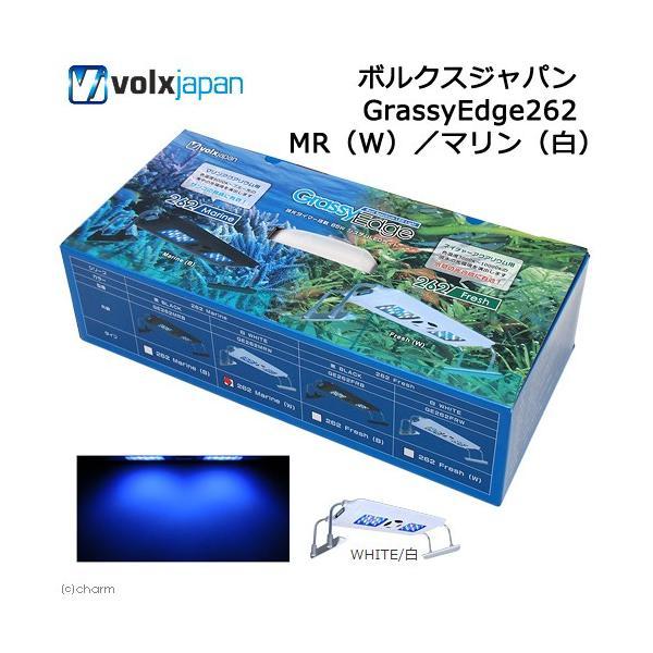 ボルクスジャパン GrassyEdge262 MR(W)/マリン(白) 沖縄別途送料 関東当日便|chanet