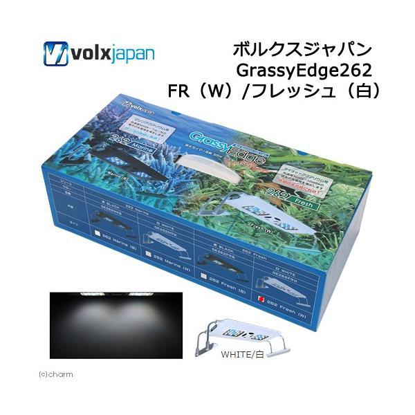 ボルクスジャパン GrassyEdge262 FR(W)/フレッシュ(白) 沖縄別途送料 関東当日便|chanet
