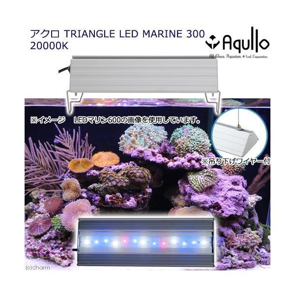 アクロ TRIANGLE LED MARINE 300 20000K Aqullo Series 沖縄別途送料 関東当日便|chanet