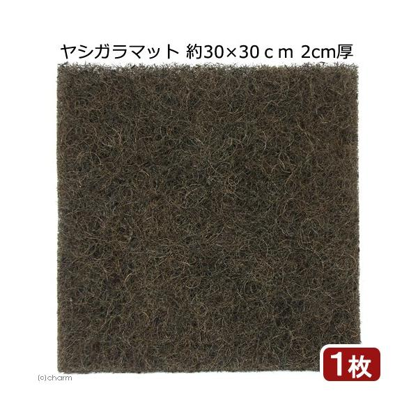ヤシガラマット 約30×30cm 2cm厚 1枚 関東当日便|chanet