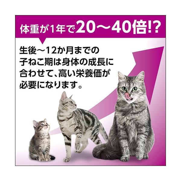 カルカン パウチ 12ヵ月までの子ねこ用 まぐろ たい入り 70g 8袋パック +1袋おまけ付き 関東当日便|chanet|02