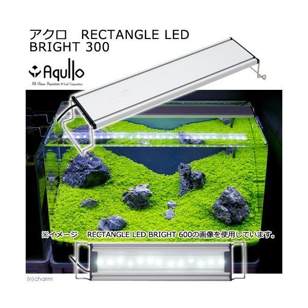 アクロ RECTANGLE LED BRIGHT 300 1600lm 関東当日便 chanet