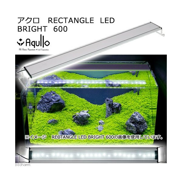 アクロ RECTANGLE LED BRIGHT 600 3250lm 同梱不可 沖縄別途送料 関東当日便 chanet