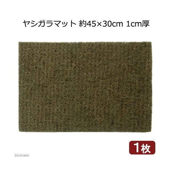 ヤシガラマット 約45×30cm 1cm厚 1枚 関東当日便|chanet
