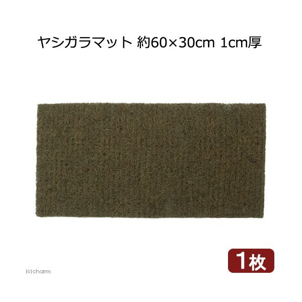 ヤシガラマット 約60×30cm 1cm厚 1枚 関東当日便|chanet