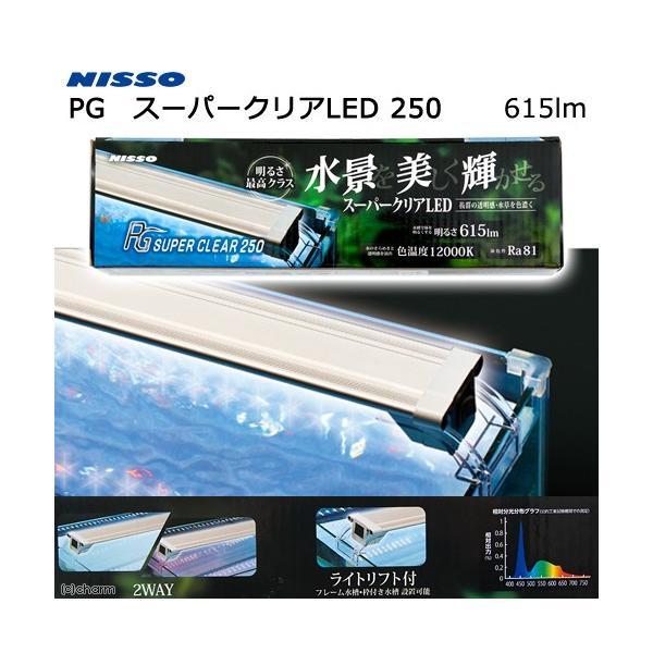 ニッソー PG スーパークリアLED 250 関東当日便|chanet