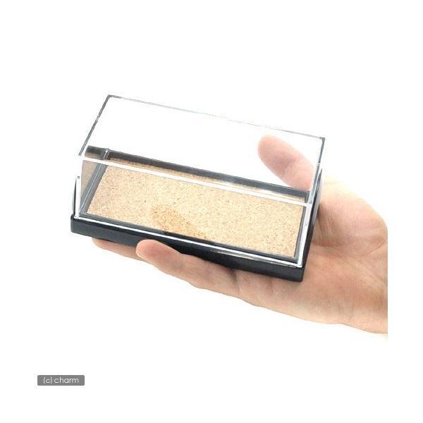 フジコン 標本コレクターズケース S 昆虫 標本用品 標本箱 関東当日便 chanet 03