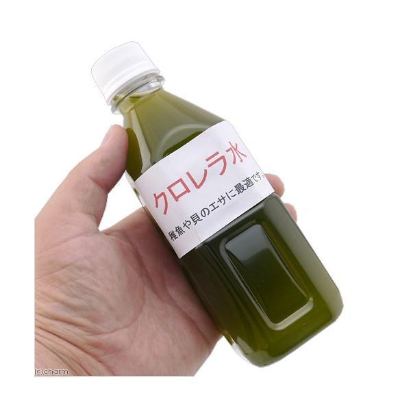 クロレラ水 350cc 関東当日便|chanet|02