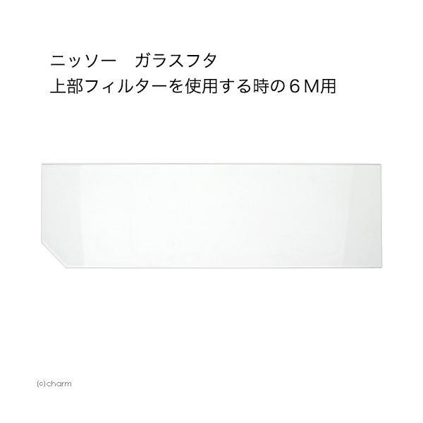 ニッソー ガラスフタ 上部フィルターを使用する時の6M用(幅52.3×奥行き15.3cm) 関東当日便|chanet