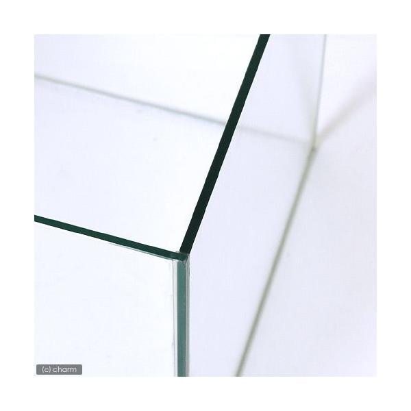 コトブキ工芸 kotobuki クリスタルキューブ 250(25×25×25cm) レグラス 25cm水槽(単体) お一人様2点限り 関東当日便|chanet|02