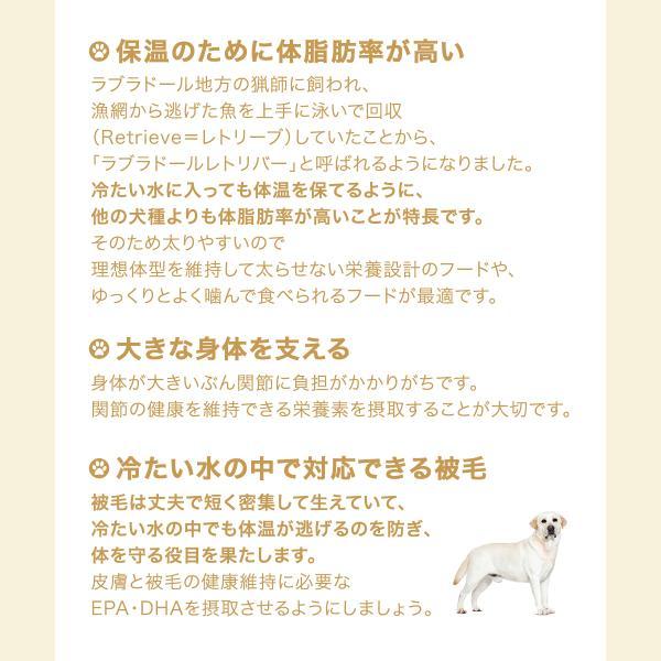 ロイヤルカナン ラブラドールレトリバー ステアライズド 成犬・高齢犬用 3kg ジップ付 chanet 02
