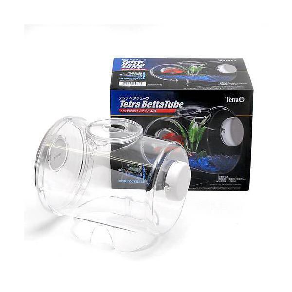 テトラベタチューブベタ飼育用インテリア水槽(22cm×16×17cm)