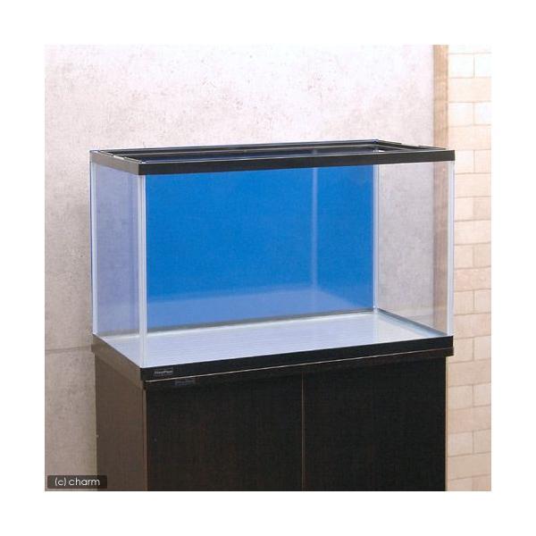 60cm水槽用 丈夫な塩ビ製バックスクリーン 60×35cm 青 スカイブルー