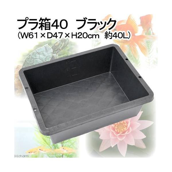プラ箱40 ブラック (W61×D47×H20cm 約40L) お一人様3点限り