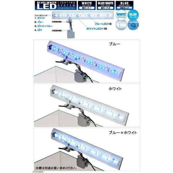 テトラ LEDフラットライト LED−FL 30〜52cm水槽用照明 熱帯魚 水草 アクアリウムライト 関東当日便 chanet 02