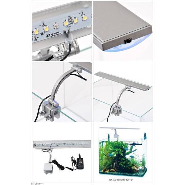 テトラ LEDフラットライト LED−FL 30〜52cm水槽用照明 熱帯魚 水草 アクアリウムライト 関東当日便 chanet 03